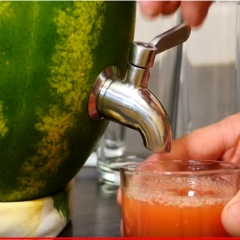Watermelon Party Keg